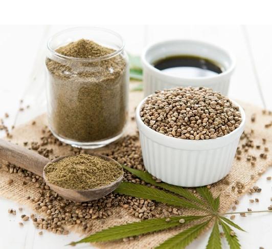 Graines protéines et huile de chanvre