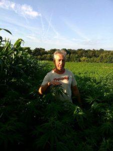 Agriculteur chanvre